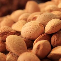 Almond ingredient