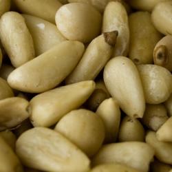 Pine Nut ingredient