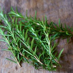 Rosemary ingredient